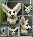 Fennec close ups by LilleahWest