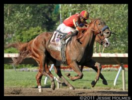 Coil Wins the Haskell by Jessie-kad