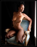 Dominique-Variations on the Blue Chair by GryphonVisArts