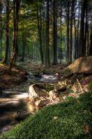 bachlauf 5 by matze-end