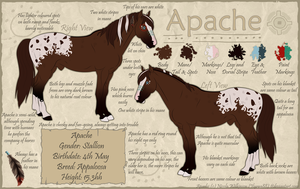 Apache Reference V2 by Ilyana88