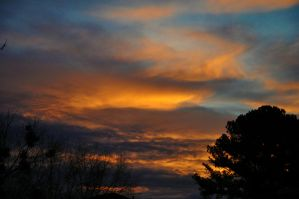 Morning Sky 11-22-11 by Tailgun2009