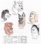 NCIS dogs by padfoot2012