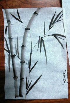 Bamboo by Ruthsic