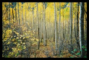 Autum in Colorado by MaksPyn
