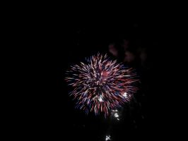 Fireworks-1428 2010 by PeaceFrogArt