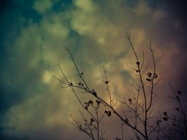 autumn sky by ukhan50699