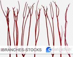 red Branches 01 - PNG by strehlistisch