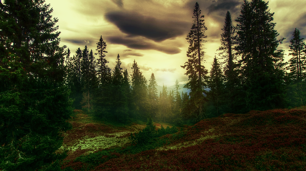 First landscape editing! by AnkyLovezHorsez