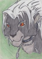 Xemnas Lion Kinged by Luca-Cooper