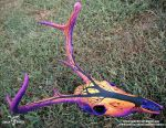 Dead Tree Sunset Deer Skull by Shadyufo
