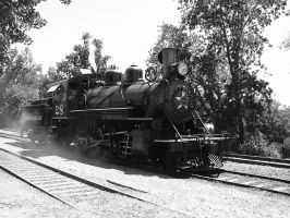 Sierra Railway 28 by NitzkaPhotography
