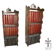 Bookcase 1 by TheoGothStock
