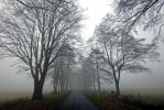 lonely road by augenweide