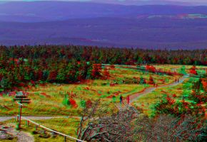 Nationalpark Harz ::: Dubois-Anaglyph HDR 3D by zour