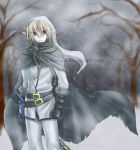 Link - This Neverending Winter by talyafera