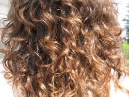 curly hair1 by nikita-stock