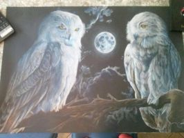 The white owl and moon by YuriDemon