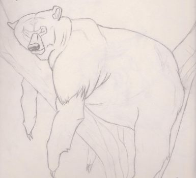 Brother Bear Sketch by inu14
