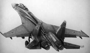Flanker's ass by Ralph1989