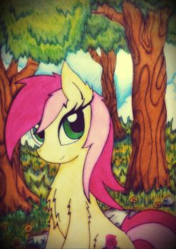 Roseluck by Kaboderp-sketchy