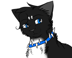 Nightclaw headshot by Nightclaw5938