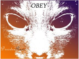 Obey  dresdeN Peace by Giligadi