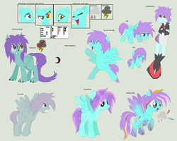 Temperate Storm Reference- 2014 by StormChu