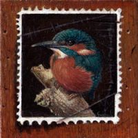Kingfisher on stamp by erwtensoep