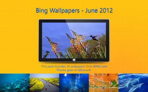 Bing Wallpapers - June 2012 by Misaki2009