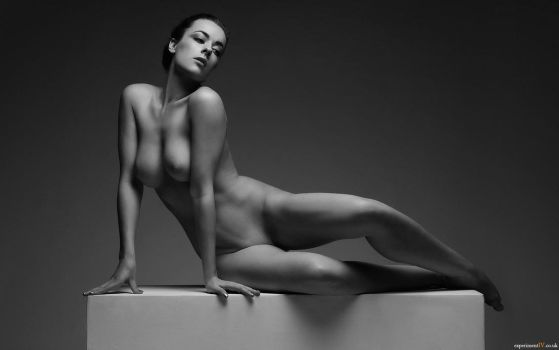 The Posing Box - Elegance by experiment-iv