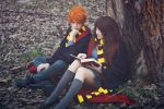 Ron and Hermione ~ Harry Potter by YamatoTaichou