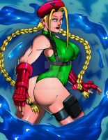 Cammy Colors by Bfetish
