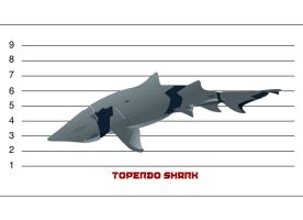 Torpedo Shark by dlredscorpion