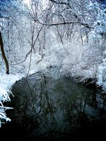 Frozen Woods and Cold Creek by GrumpyCosplay