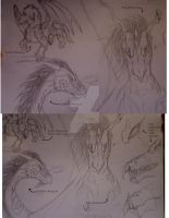 'Last Hope' dragon sketches by cookiegirl14