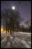 Very cold night... by Roman89