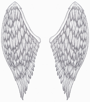 Angel Wings by tattoo-parlour