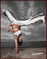 Capoeira by organicstealth