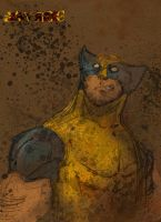 Wolvie Colors by iJayRoc