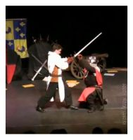 3rd Medieval Fencing Show by redsilverjon
