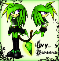 Ivy the echidna by GreenBlood12354