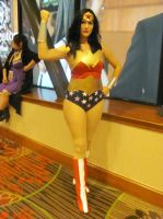 Animefest '13 - DC Comics 20 by TexConChaser