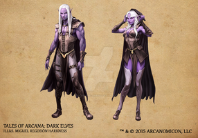 Tales of Arcana 1st Set - Dark Elves by TalesofArcanaRPG