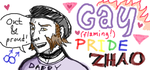 Gay Pride Zhao by foxysquid