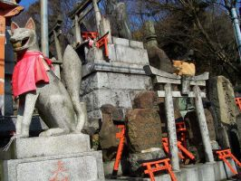 Cat on a Torii by starsoverhyrule