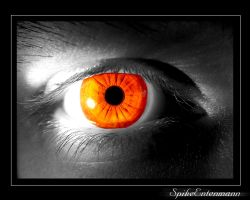 The Eye by SpikeEnte