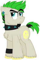 Ponified Duncan by LeKraZytacos