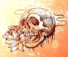 Rough skull sketch by jerrrroen
