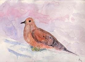 mouring dove in the snow by mjdezo